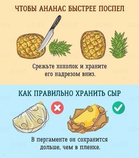 http://s9.uploads.ru/0Jb9m.jpg