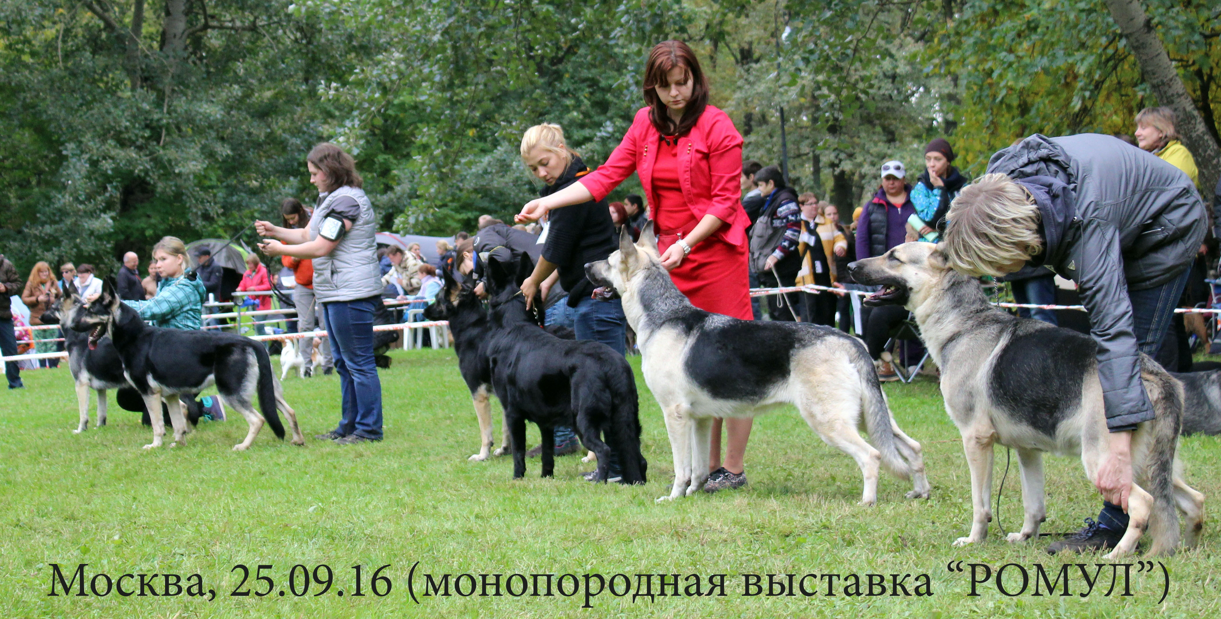 http://s9.uploads.ru/0vAgq.jpg