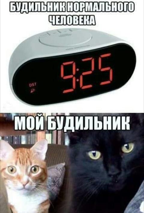 http://s9.uploads.ru/25VJC.jpg