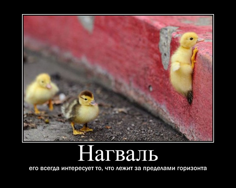 http://s9.uploads.ru/25z3L.jpg