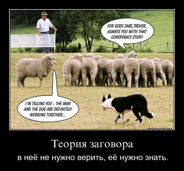 http://s9.uploads.ru/2H8WO.jpg