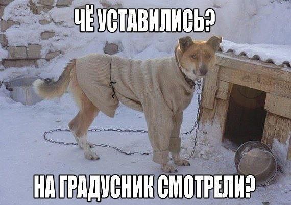 http://s9.uploads.ru/47kcY.jpg