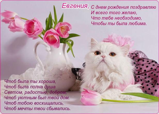 http://s9.uploads.ru/4fAX5.jpg