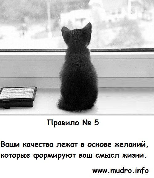 http://s9.uploads.ru/4k2Co.jpg