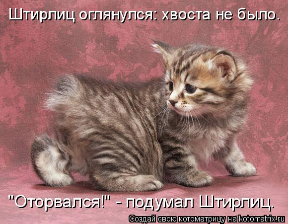 http://s9.uploads.ru/4mfMF.jpg