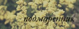 http://s9.uploads.ru/58pvq.jpg