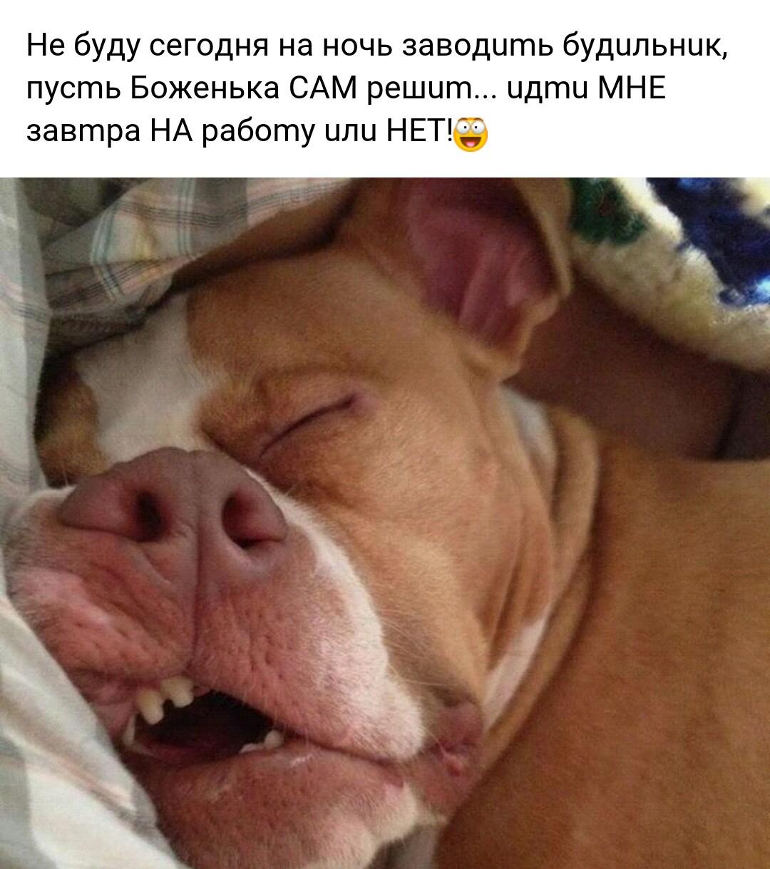 http://s9.uploads.ru/5L4HF.jpg