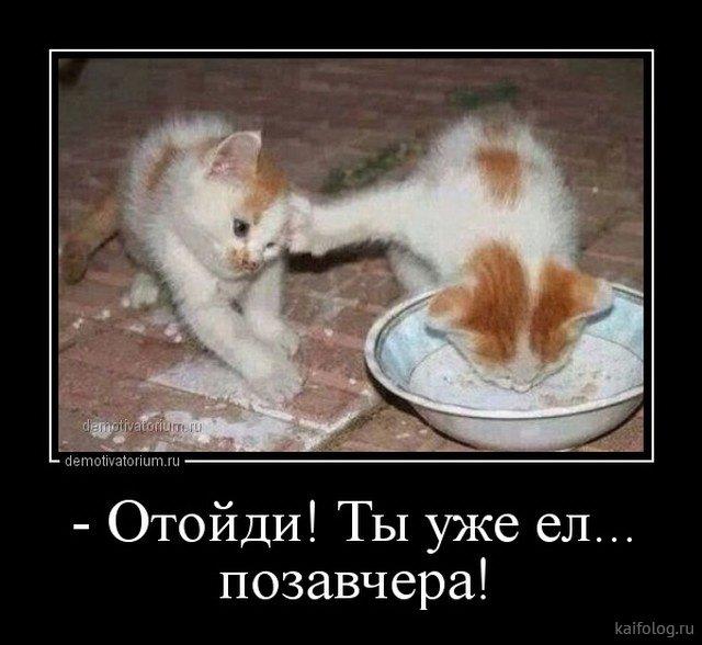 http://s9.uploads.ru/5xuJf.jpg