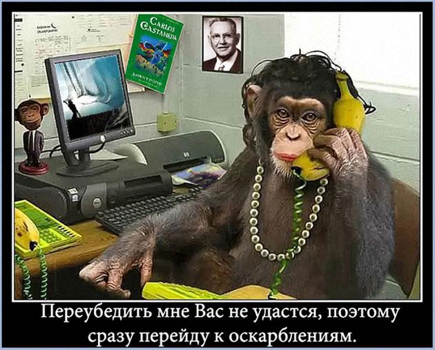 http://s9.uploads.ru/6g3yh.jpg