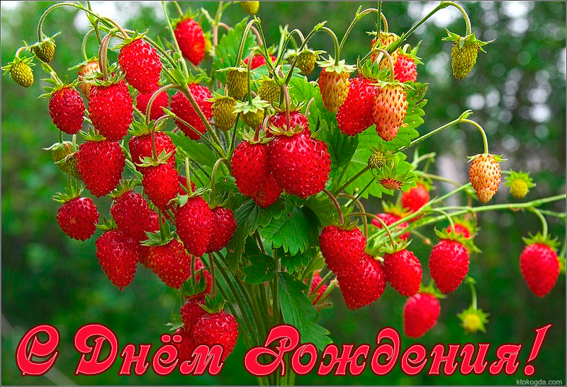 http://s9.uploads.ru/6kMbv.jpg