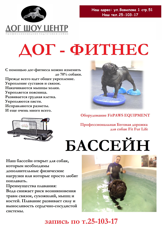 http://s9.uploads.ru/73SMx.jpg