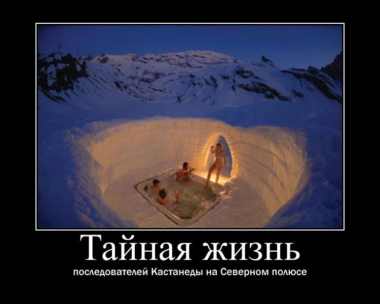 http://s9.uploads.ru/8W9sV.jpg