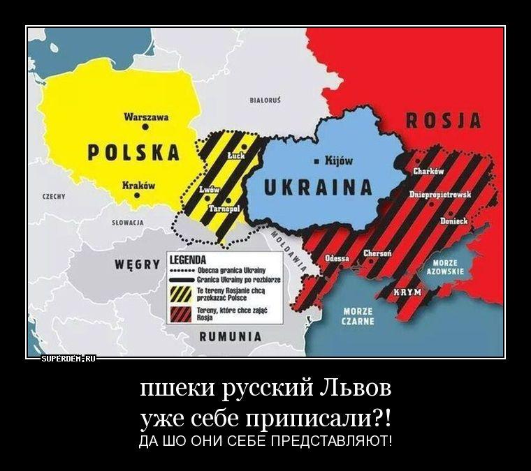 http://s9.uploads.ru/9cVtx.jpg
