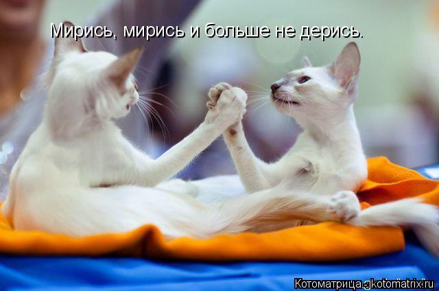 http://s9.uploads.ru/9nRWL.jpg
