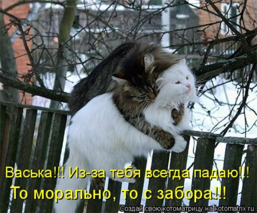 http://s9.uploads.ru/9zL5e.jpg