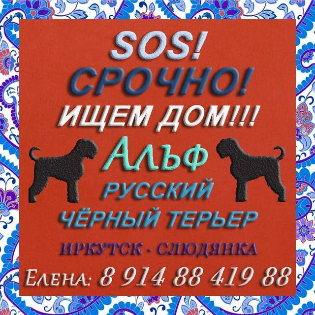 http://s9.uploads.ru/BTPAx.jpg