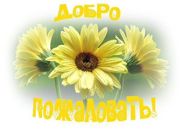 http://s9.uploads.ru/CfXz4.jpg