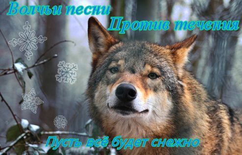 http://s9.uploads.ru/CxsTt.jpg