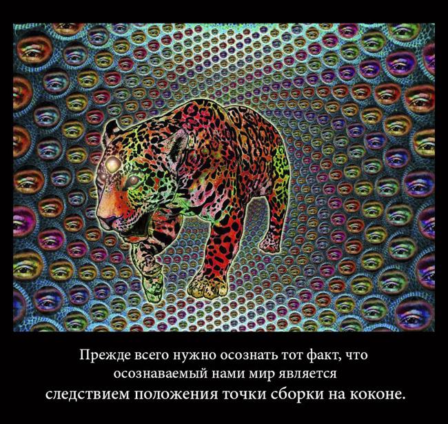 http://s9.uploads.ru/DNPJG.jpg