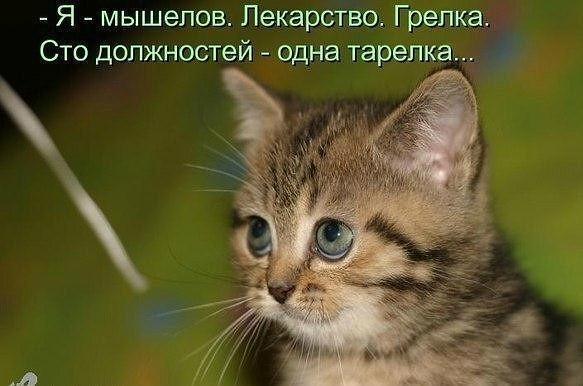 http://s9.uploads.ru/Ew3La.jpg
