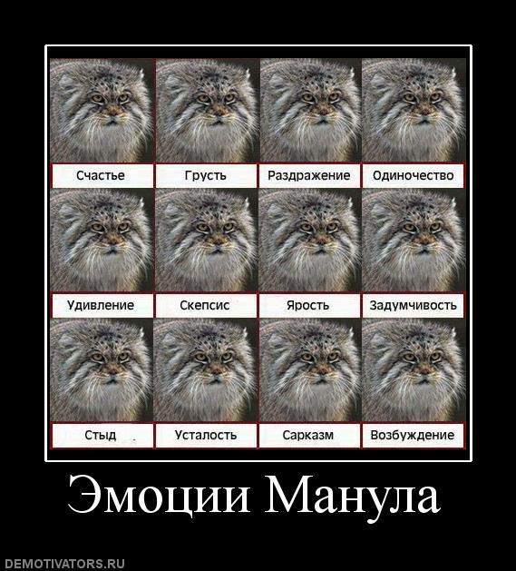 http://s9.uploads.ru/FQTjW.jpg