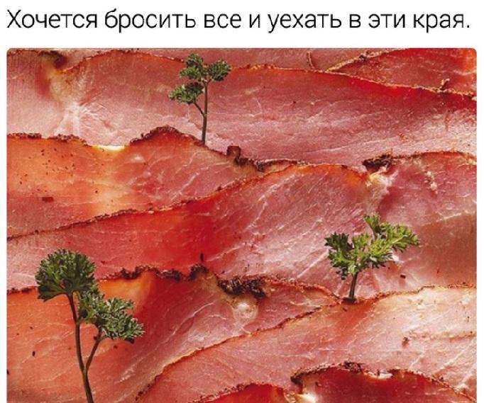 http://s9.uploads.ru/Fg7fq.jpg