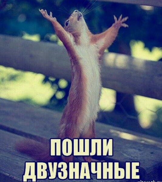 http://s9.uploads.ru/HQoLh.jpg