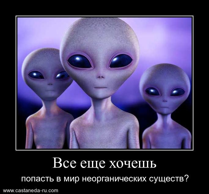 http://s9.uploads.ru/Ha0pe.jpg