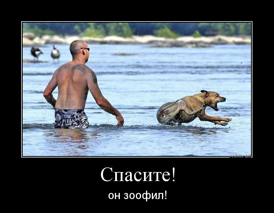 http://s9.uploads.ru/HdJte.jpg