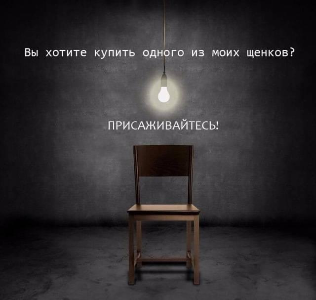 http://s9.uploads.ru/I1wGx.jpg