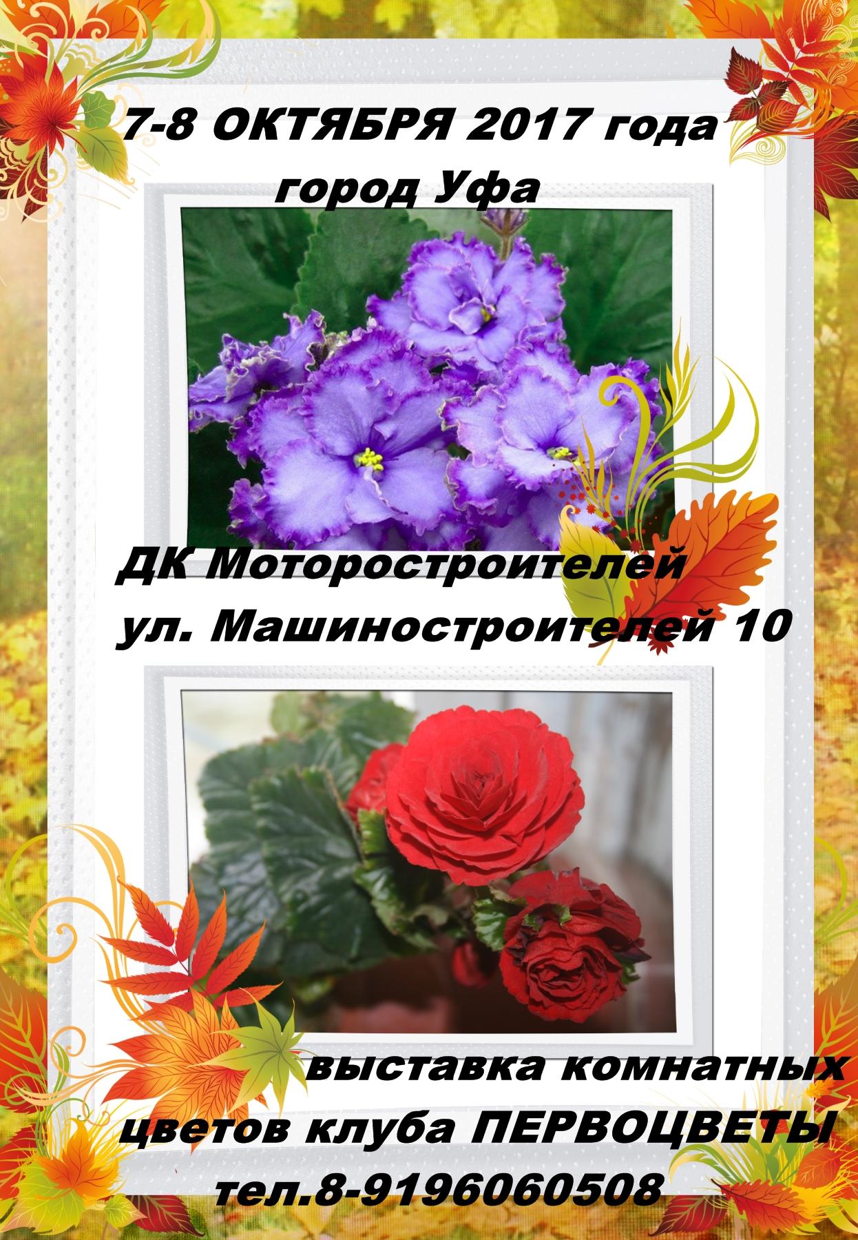 http://s9.uploads.ru/KqRek.jpg
