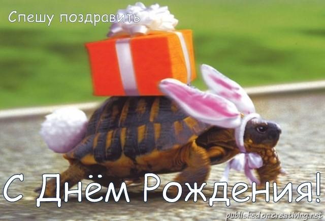 http://s9.uploads.ru/N5IgH.jpg
