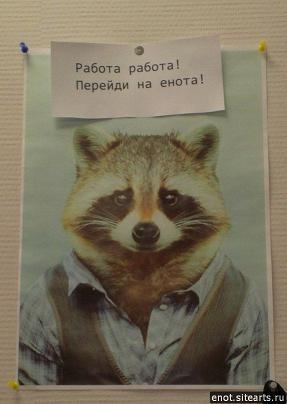 http://s9.uploads.ru/N8Dvh.jpg