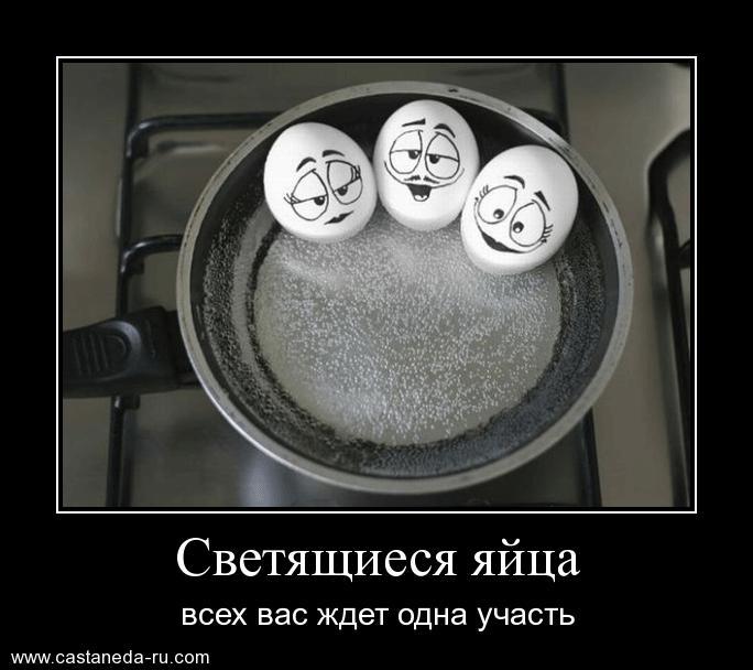 http://s9.uploads.ru/NPcF0.jpg