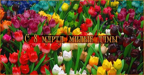 http://s9.uploads.ru/NTUgf.png