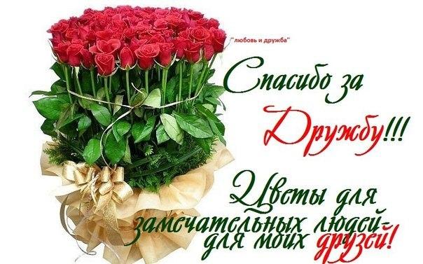 http://s9.uploads.ru/QTCH0.jpg