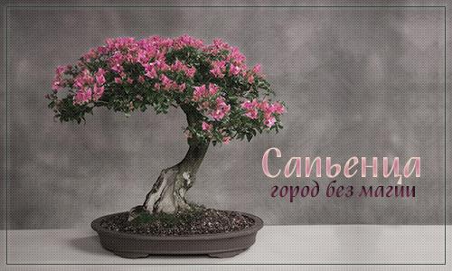 http://s9.uploads.ru/T1vZS.jpg