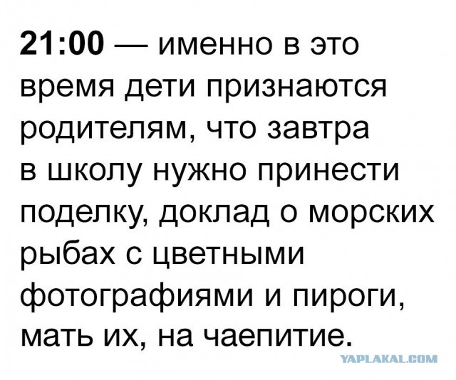 http://s9.uploads.ru/T6ctL.jpg