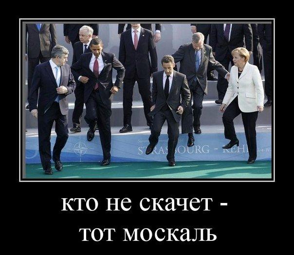 http://s9.uploads.ru/U1Z5M.jpg