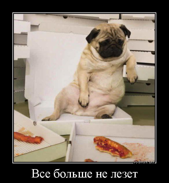 http://s9.uploads.ru/Ui30P.jpg