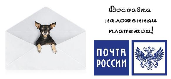 http://s9.uploads.ru/VU9hf.jpg
