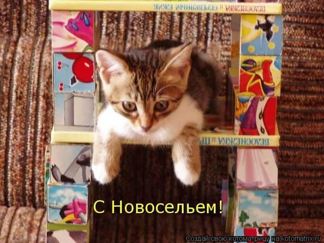 http://s9.uploads.ru/VbZfz.jpg