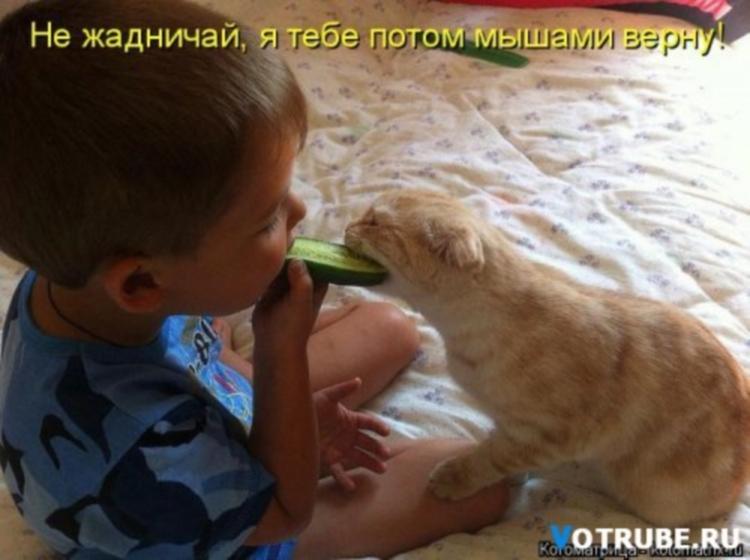 http://s9.uploads.ru/Wdv5n.jpg