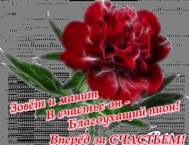 http://s9.uploads.ru/WzCYr.png