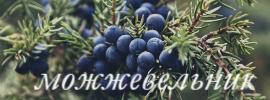 http://s9.uploads.ru/Y5eQz.jpg