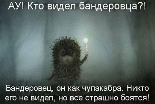http://s9.uploads.ru/Z8KIg.jpg