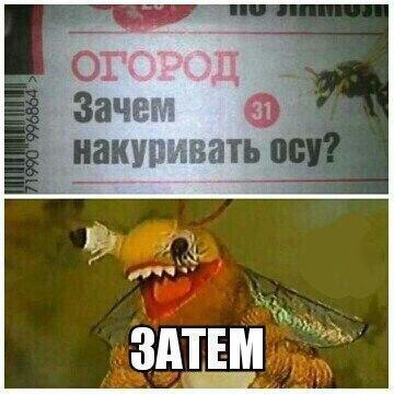 http://s9.uploads.ru/ZRXye.jpg