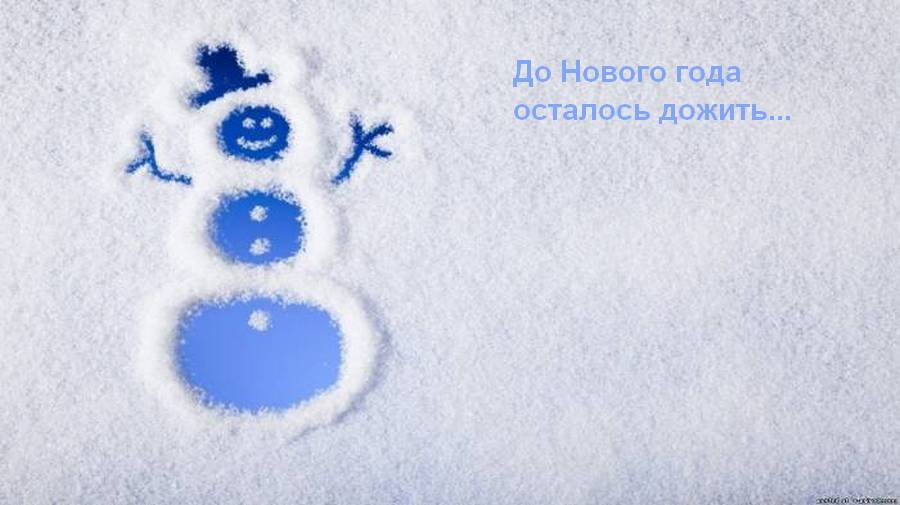 http://s9.uploads.ru/b3vcq.jpg
