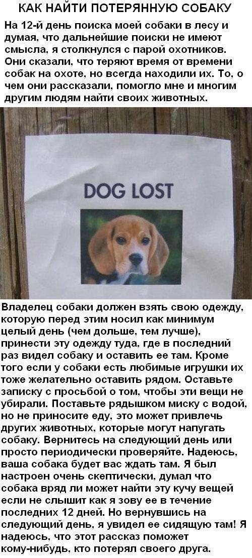 http://s9.uploads.ru/b7h6F.jpg