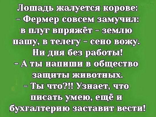http://s9.uploads.ru/cW9CK.jpg